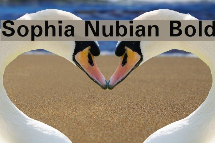 Sophia Nubian Bold Font examples