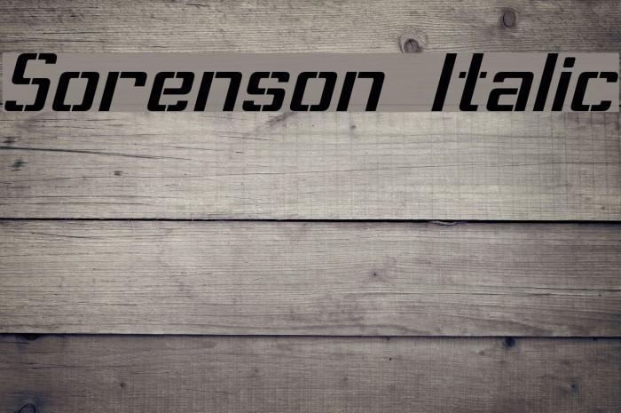 Sorenson Italic Шрифта examples