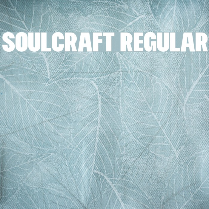 Soulcraft Regular Polices examples