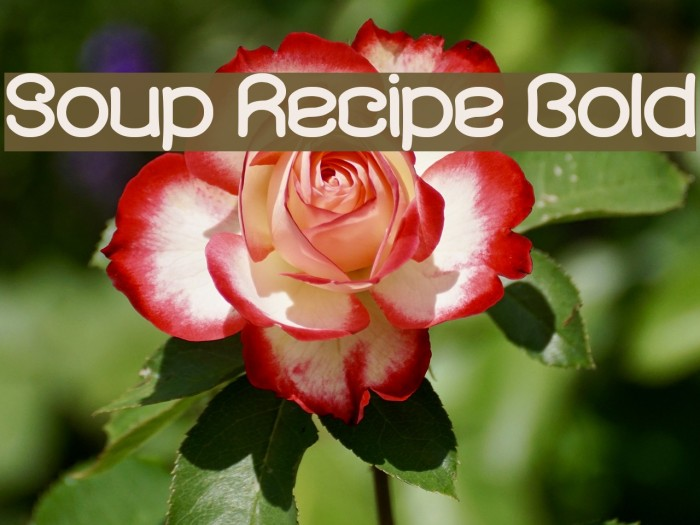 Soup Recipe Bold フォント examples