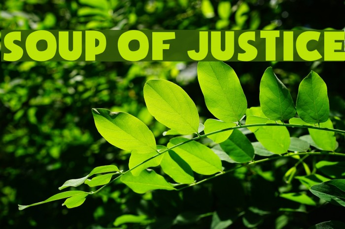 Soup of Justice Fonte examples