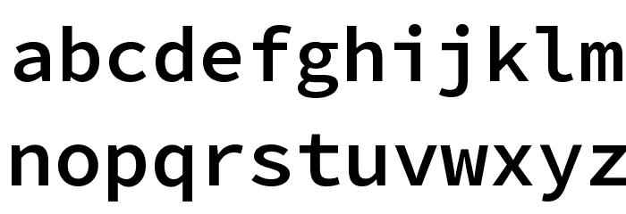 Source Code Pro SemiBold Font LOWERCASE
