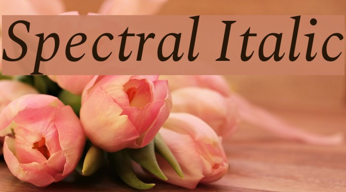Spectral Italic Fuentes examples
