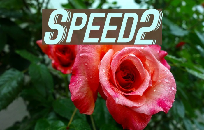 Speed2 Font examples