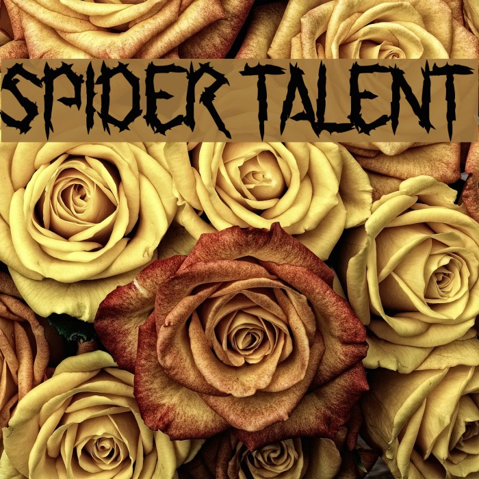 Spider Talent Fonte examples