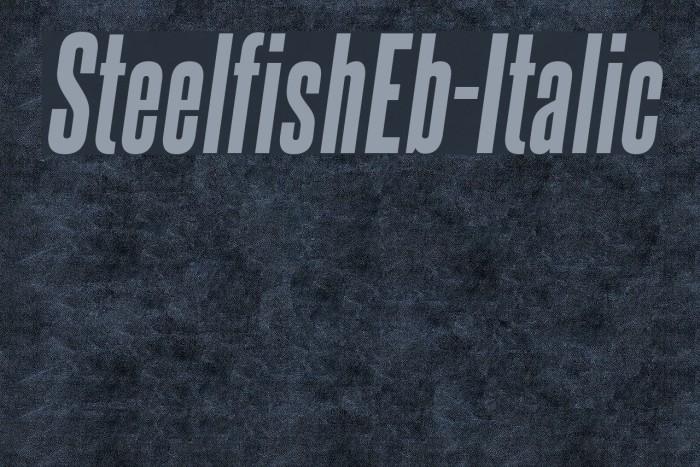 SteelfishEb-Italic لخطوط تنزيل examples