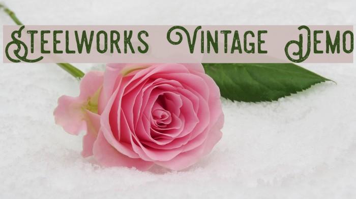 Steelworks Vintage Demo Font examples