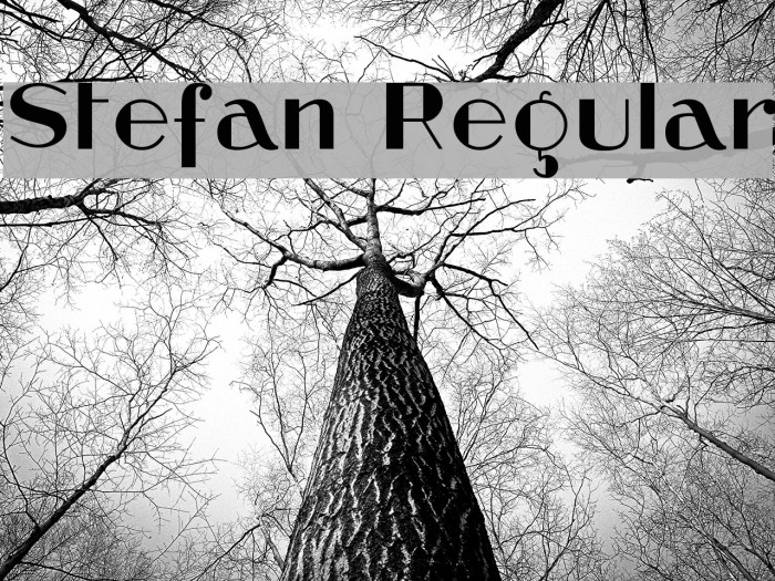 Stefan Regular Font examples