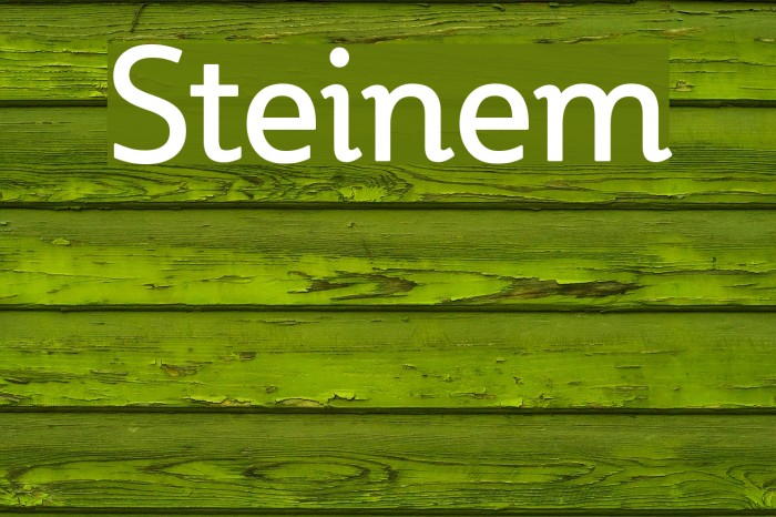 Steinem Font examples