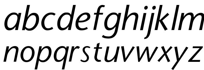 StoneSans Italic Font LOWERCASE