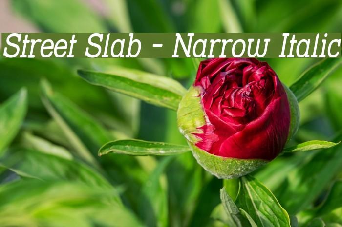 Street Slab - Narrow Italic फ़ॉन्ट examples