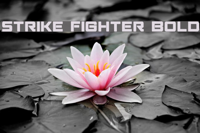 Strike Fighter Bold Schriftart examples