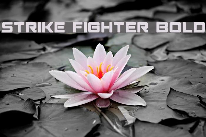 Strike Fighter Bold لخطوط تنزيل examples