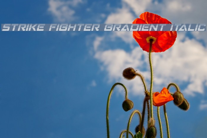 Strike Fighter Gradient Italic لخطوط تنزيل examples