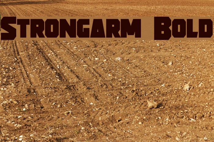 Strongarm Bold Font examples