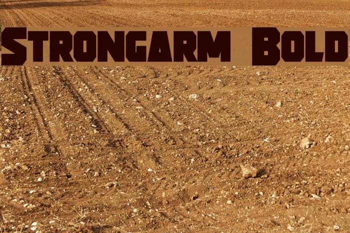 Strongarm Bold फ़ॉन्ट examples