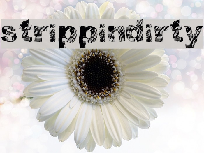 strippindirty Font examples