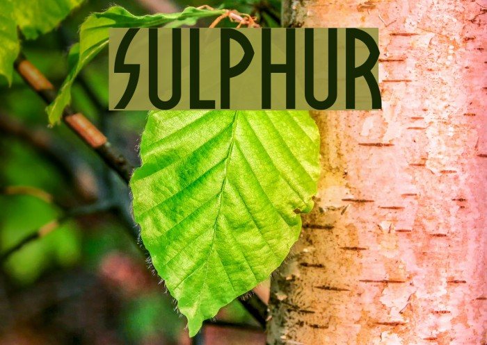 Sulphur Font examples
