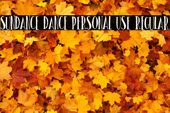 Sundance dance PERSONAL USE Regular Polices examples