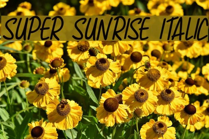 Super Sunrise Italic Schriftart examples