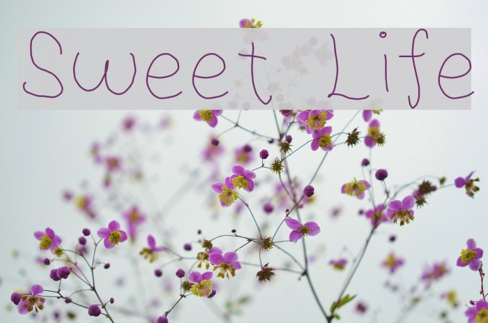 Sweet Life Font examples
