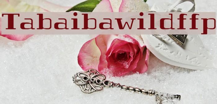 Tabaibawildffp Шрифта examples