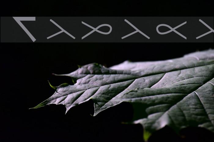 Tadaca Font examples