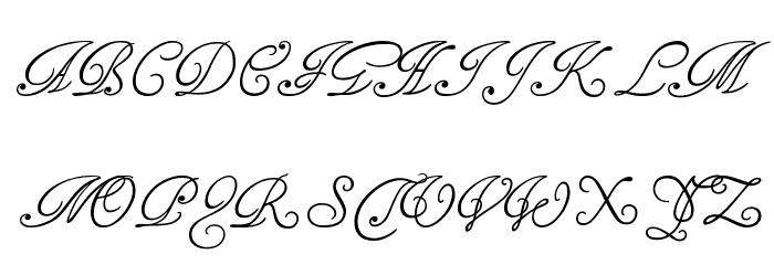 Tagettes フォント 大文字