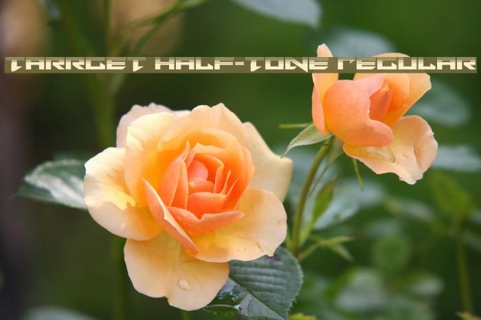Tarrget Half-Tone Regular Fonte examples