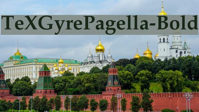 TeXGyrePagella-Bold Font examples