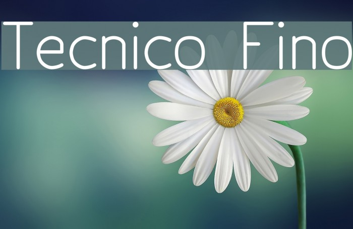 Tecnico Fino フォント examples