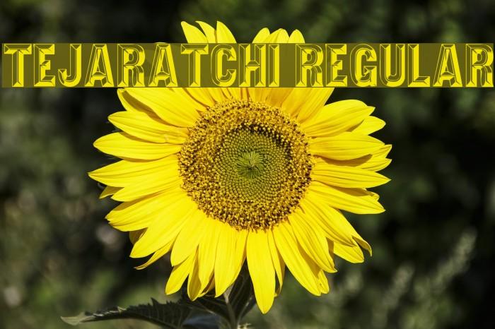 Tejaratchi Regular Font examples