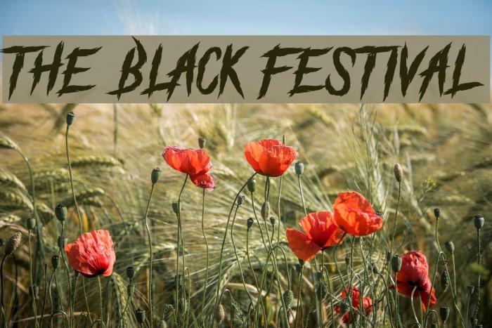 The Black Festival Schriftart examples