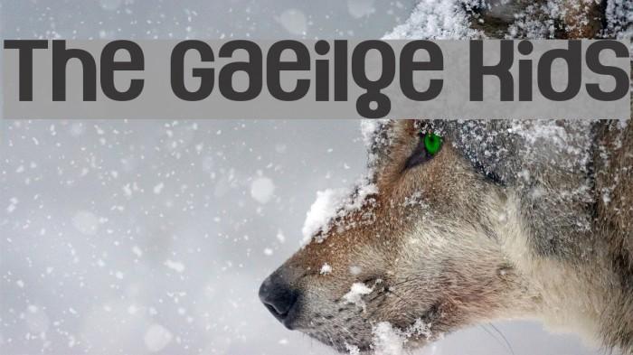 The Gaeilge Kids Fonte examples