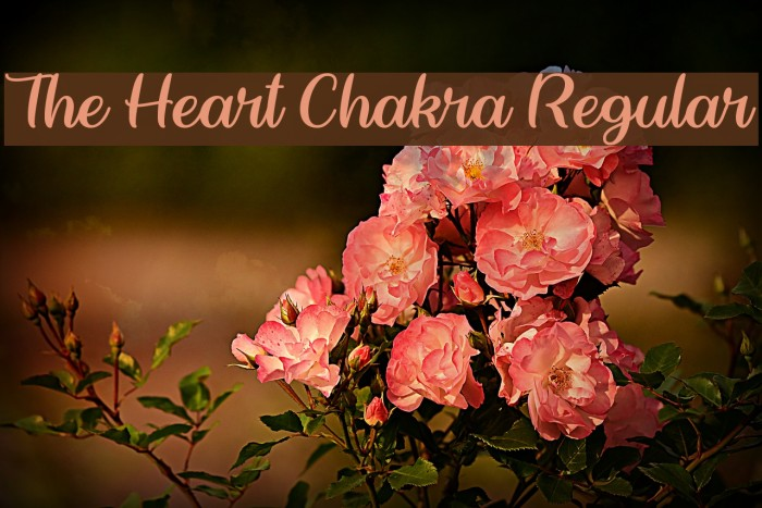 The Heart Chakra Regular Caratteri examples