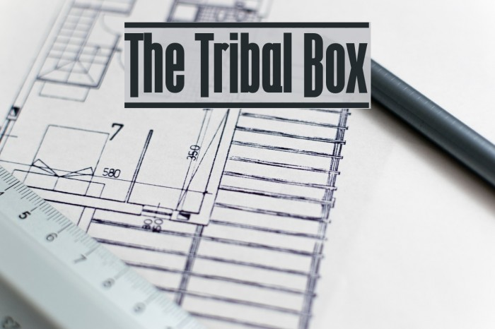 The Tribal Box Polices examples