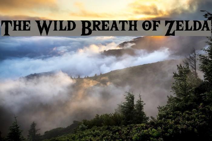 The Wild Breath of Zelda Fonte examples