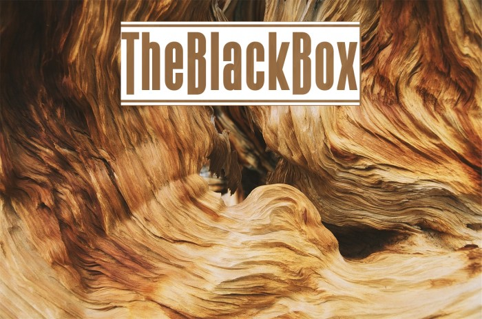 TheBlackBox फ़ॉन्ट examples