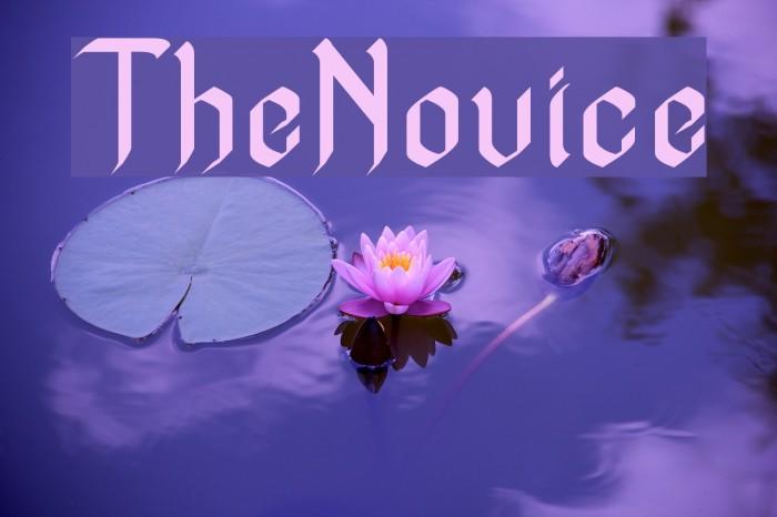 TheNovice 字体 examples