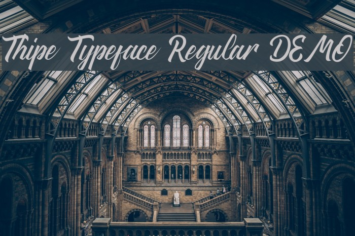 Thipe Typeface Regular DEMO फ़ॉन्ट examples