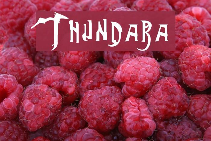 Thundara Font examples