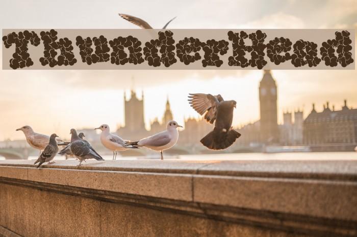 ThunderHead Font examples