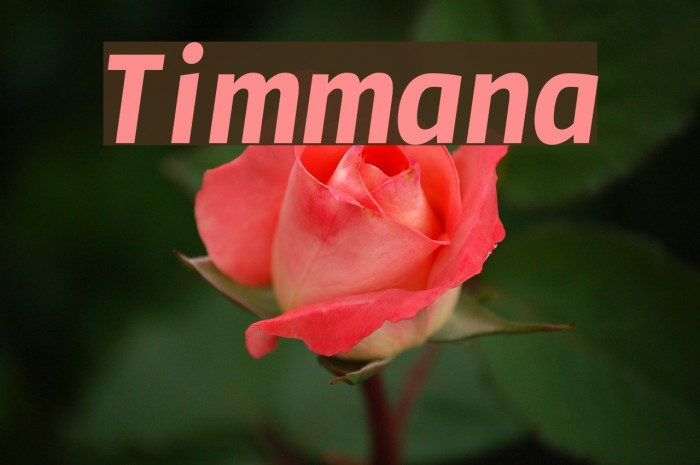 Timmana Fonte examples