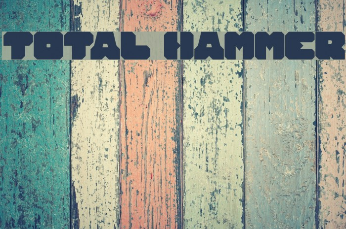 TOTAL HAMMER Polices examples