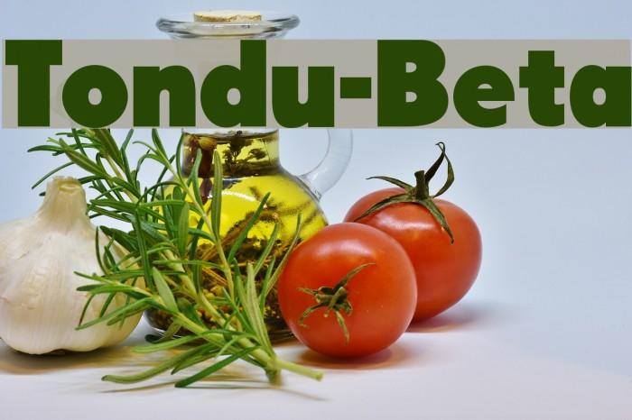 Tondu-Beta Font examples