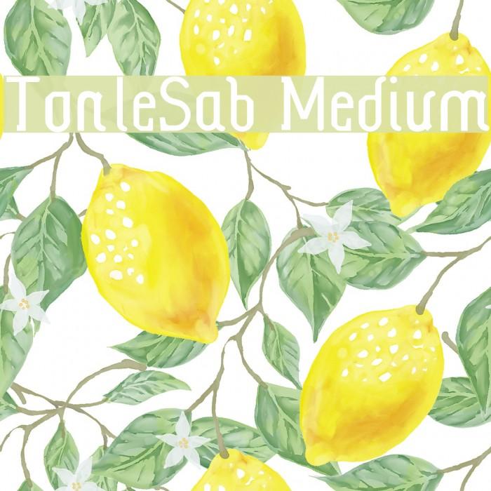 TonleSab Medium لخطوط تنزيل examples
