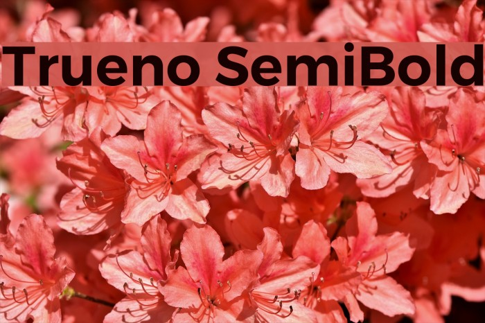 Trueno SemiBold Font examples