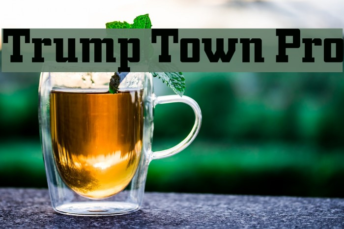 Trump Town Pro Fonte examples