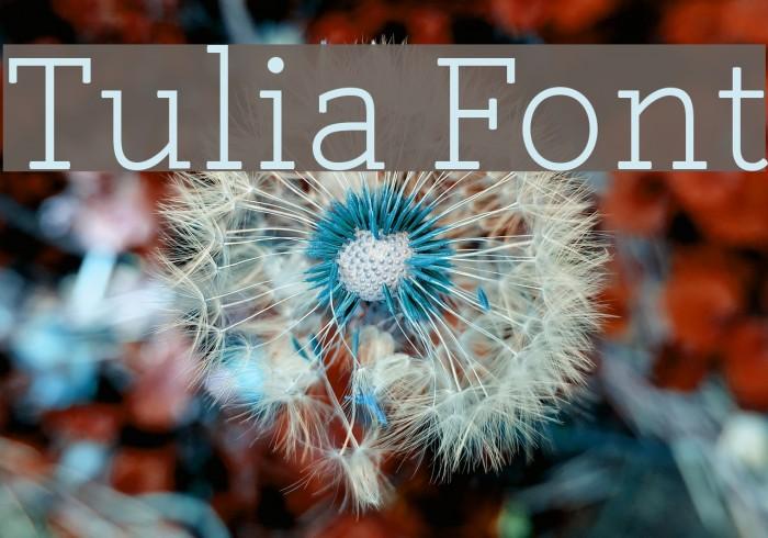 Tulia Font examples