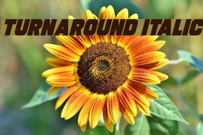 Turnaround Italic Font examples